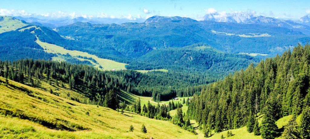 Dürrbachhorn