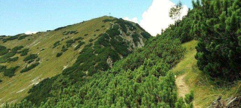 Wandern Notkarspitze